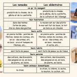 Ludovia 2011 : Tous nomades ?